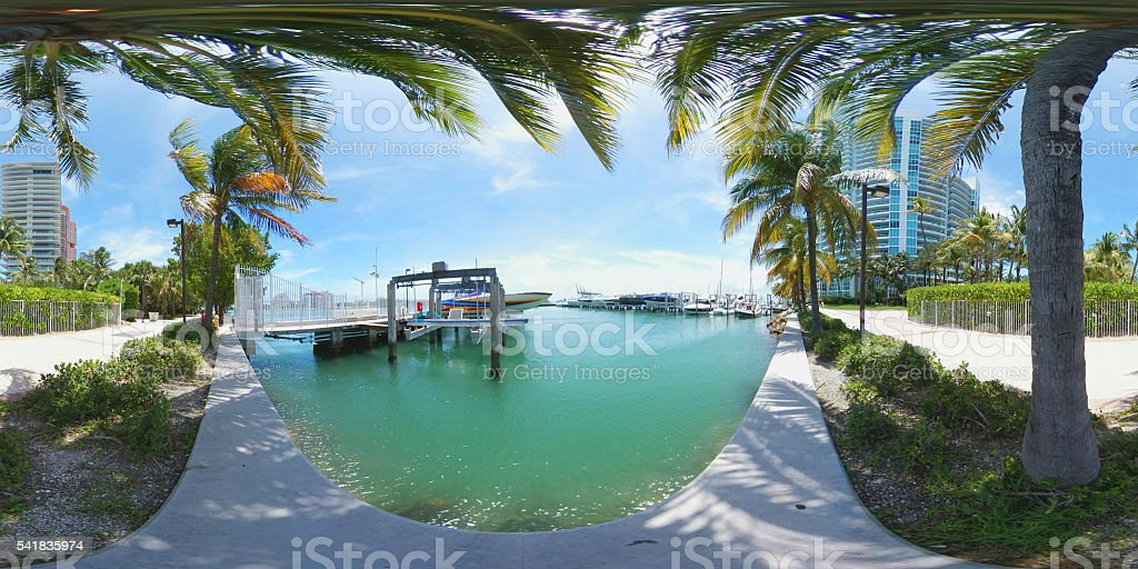 Boat marina with tropical palms stock photo