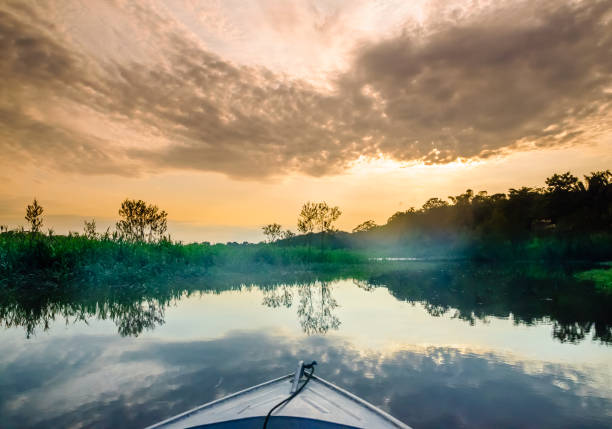 Boat on Amazon in Brazil View on boat on Amazon in Brazil amazon region stock pictures, royalty-free photos & images