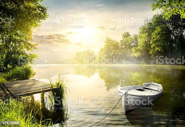 Photo of Boat on the bank