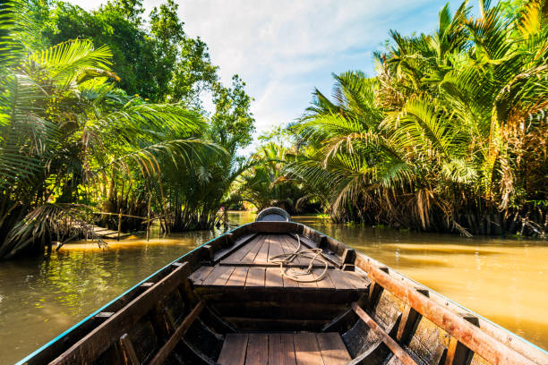 boat on the mekong river - mekong river stock pictures, royalty-free photos & images