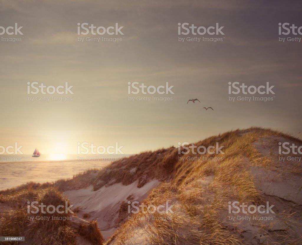 Boot auf dem Meer – Foto