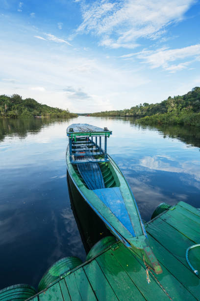 Boat on the tributary of the river Rio Negro A traditional boat used for transportation purposes on the river Rio Negro rio negro brazil stock pictures, royalty-free photos & images