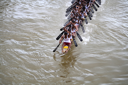 Kottayam, India- August 29, 2010 :Oarsmen in a snake boat team row vigorously in the Kottayam Boat race on August 29, 2010 in Kottayam, India.