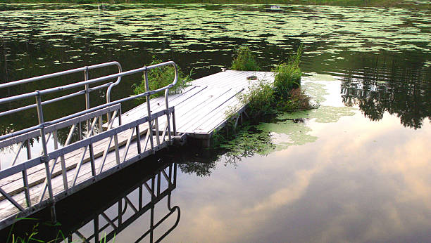 boat ramp on murky pond stock photo