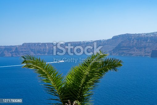Boat sailing on santorini caldera, going to Thira. Palm tree on the foreground. travel concept
