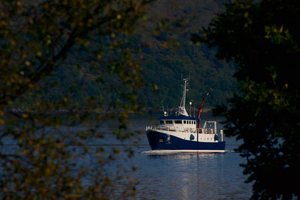 Boat through the trees Boat heading down Loch Linnhe, Highland, Scotland skeable stock pictures, royalty-free photos & images