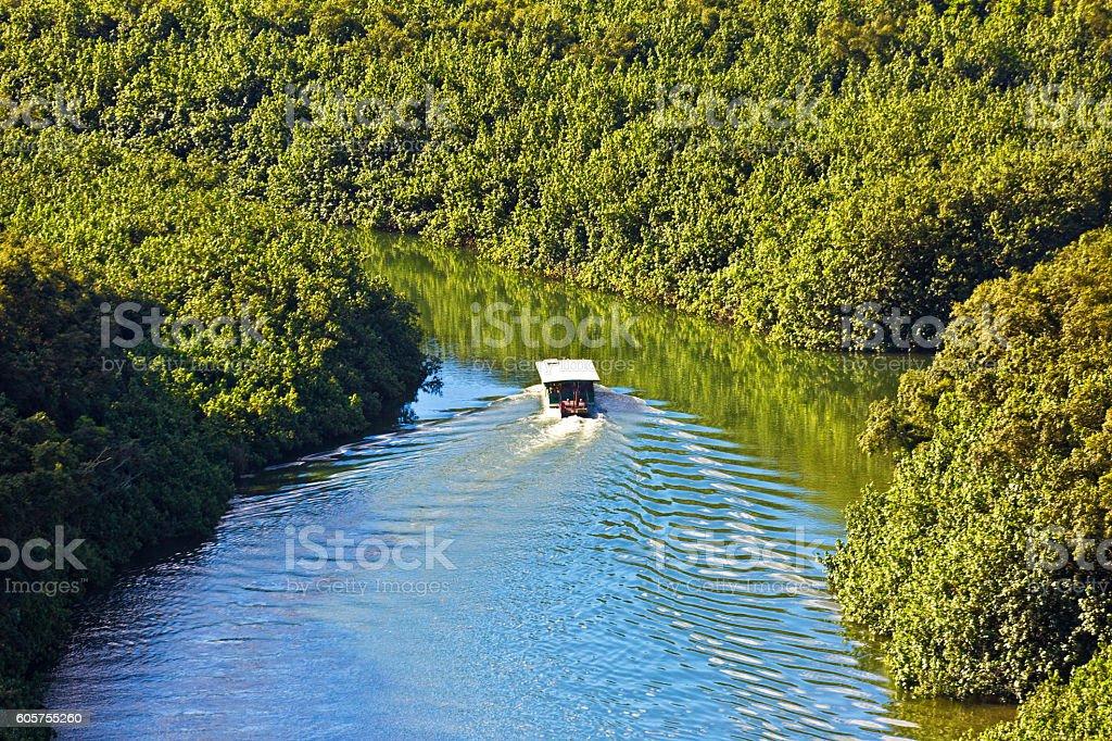 Boat Tour on the Wailua River, Kauai, Hawaii, USA stock photo