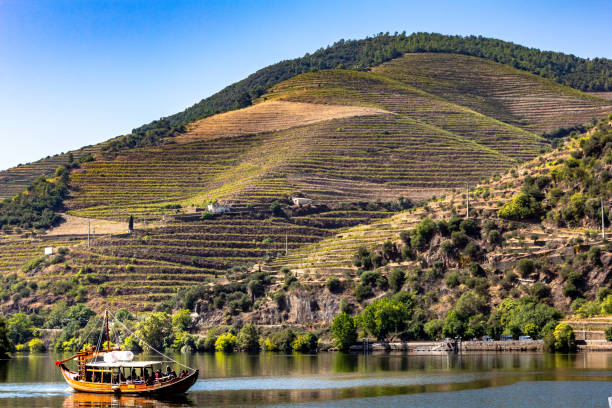 Boat tours on the Douro river, Douro valley, Porto, Portugal Boat tours on the Douro river, Douro valley, Porto, Portugal. Mountains and vine. duero stock pictures, royalty-free photos & images