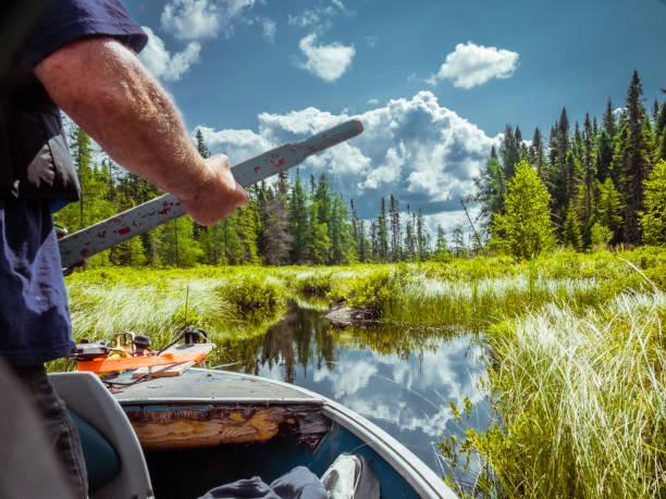 Boat trip in a marsh. stock photo