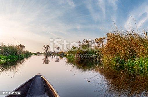 Adventure boat trip in a traditional Makoro at the Okavango Delta, Botswana