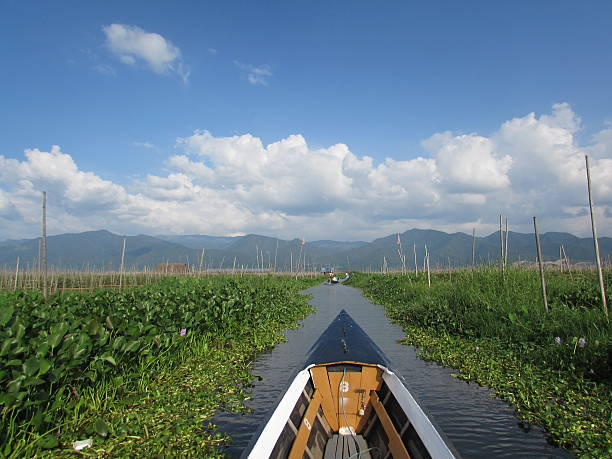 Boat view in the garden of Inle Lake Myanmar stock photo