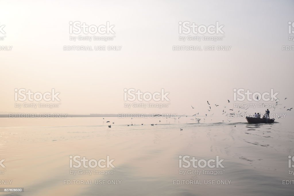 Boat with tourists and birds that floats on river Ganga after sunrise stock photo