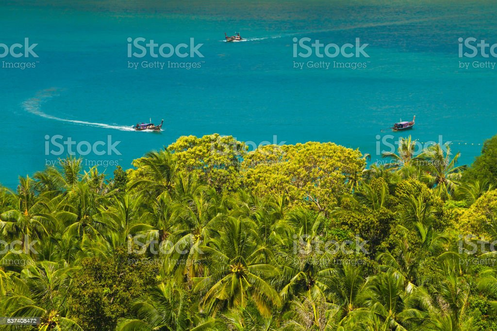 Boats and palm trees in Thailand stock photo