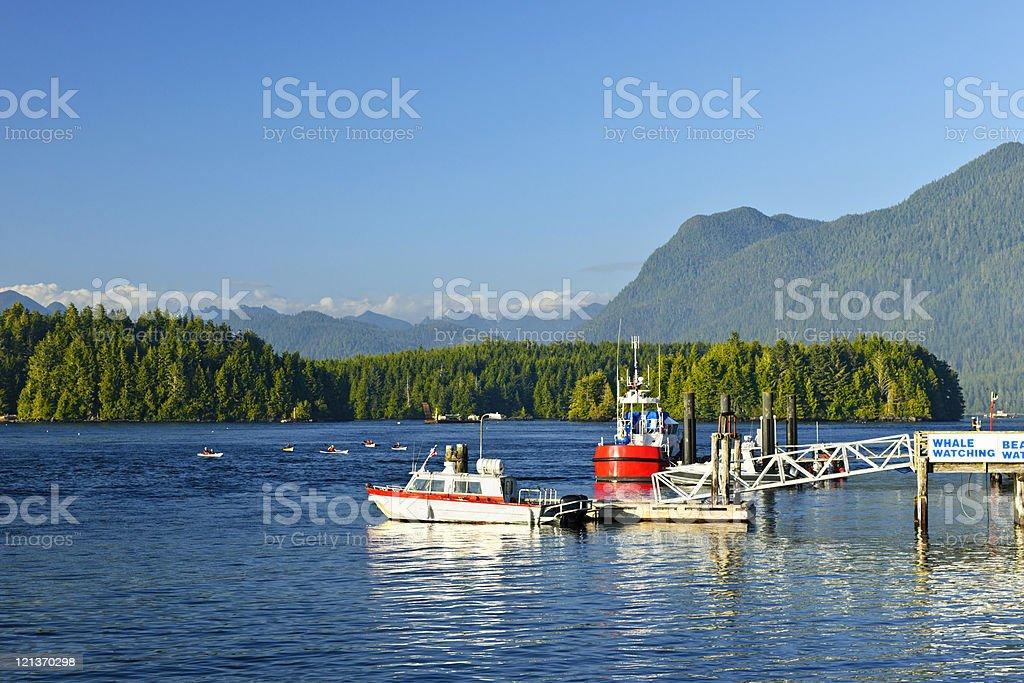 Boats at dock in Tofino, Vancouver Island, Canada stock photo