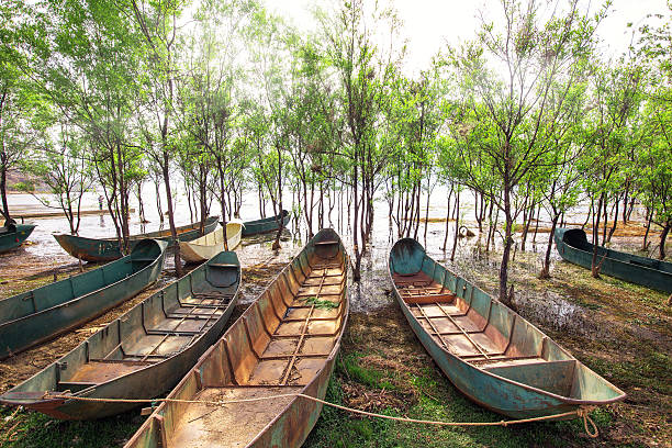Boats beside the river Boats beside the river dilapidate stock pictures, royalty-free photos & images