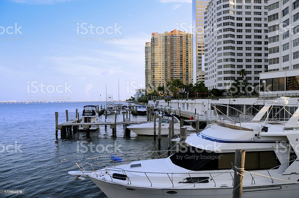 boats docked with miami downtown condos royalty-free stock photo