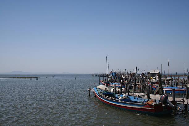 barcos no rio de floresta - fishman imagens e fotografias de stock
