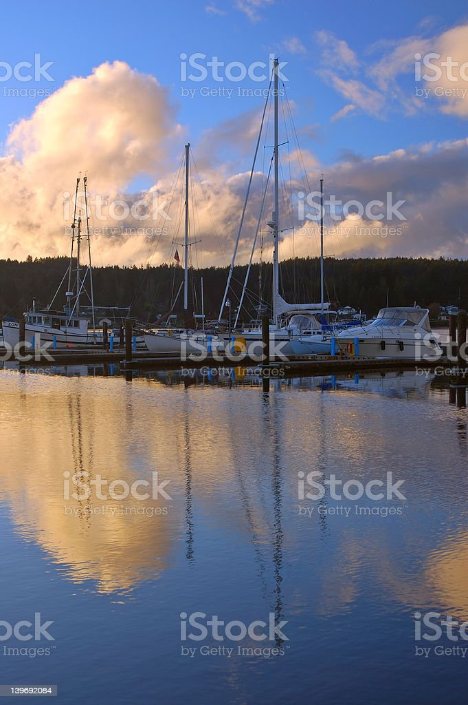 boats in the harbor royalty-free stock photo