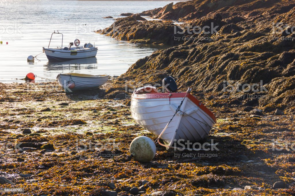 Boats in the Harbour in Anglesey, Wales, UK stock photo