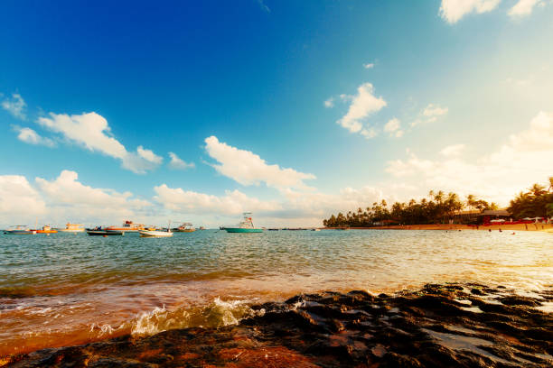Boats moored during the sunset at the sea in Praia do Forte, Brazil stock photo