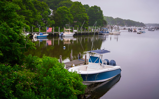 Boats Moored in Foggy Summer Harbor Surrounded by Green Forest