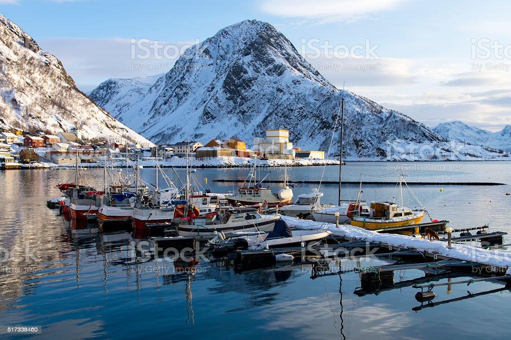 Boats of Oksfjord stok fotoğrafı