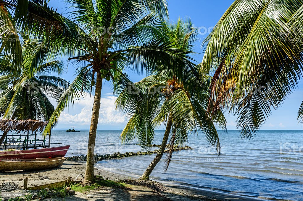 Boats on Caribbean beach, Guatemala stock photo