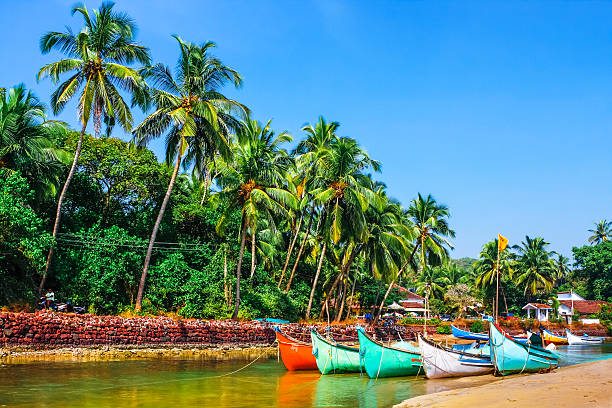 boats on the river bank bright boats on the river bank  in tropic with palms and blue sky. Goa, India goa stock pictures, royalty-free photos & images