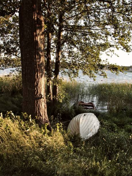 båtar - malin strandvall bildbanksfoton och bilder
