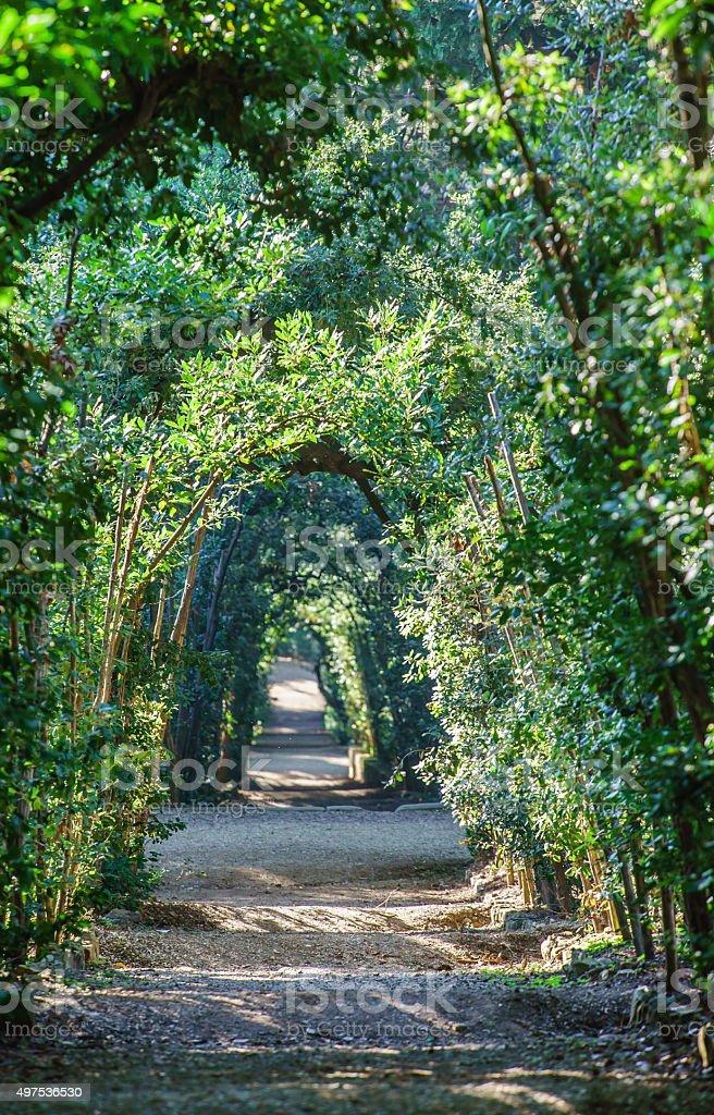 Boboli Gardens Florence Italy Stock Photo Download Image Now