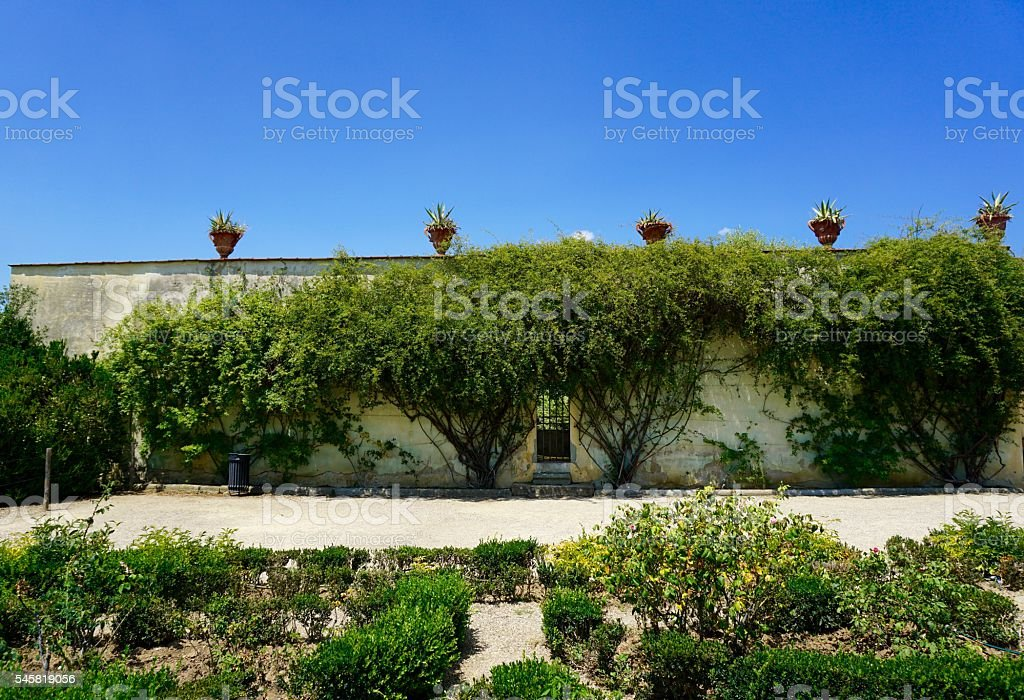 Boboli Gardens Florence Stock Photo & More Pictures of Blue | iStock