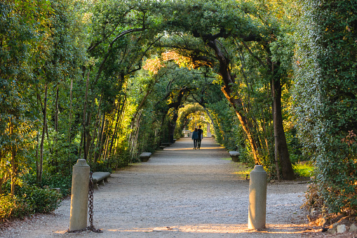 Boboli gardens in Florence, a couple walking in an arched path