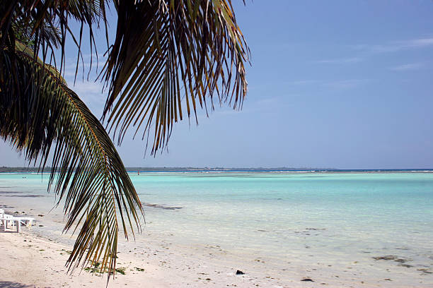 boca chica beach stock photo