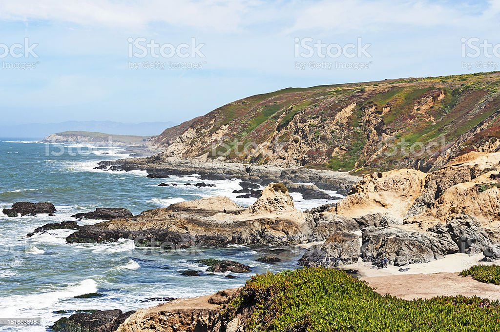 Bodega Head Shoreline royalty-free stock photo