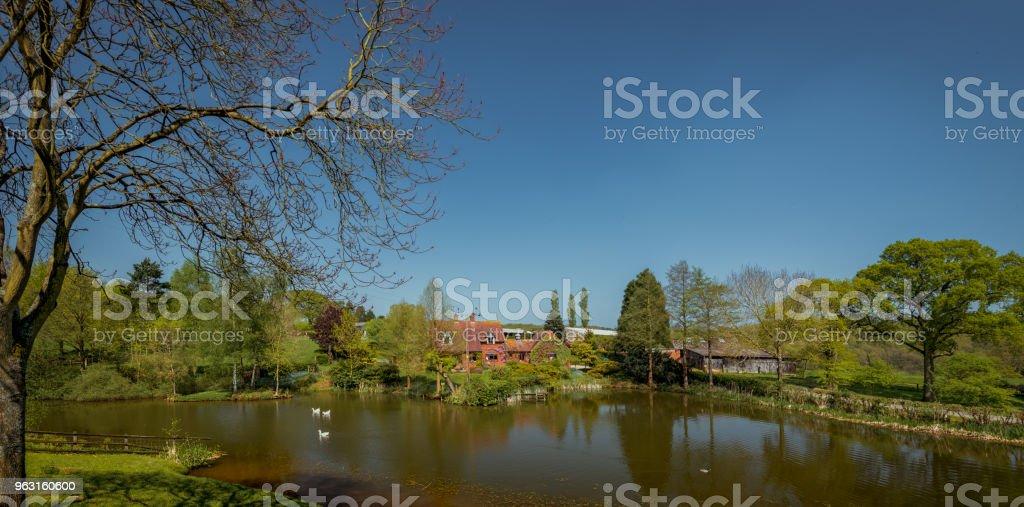 Bodenham Arboretum panoramic. stock photo