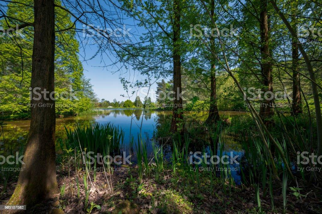Bodenham Arboretum. stock photo