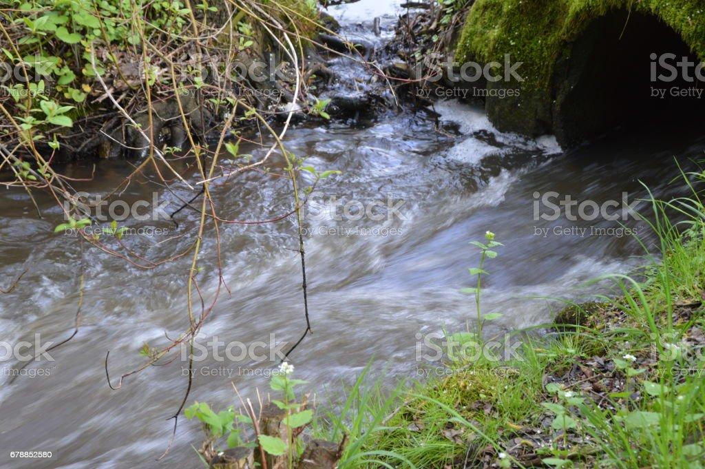 Gewässer am Wegrand photo libre de droits