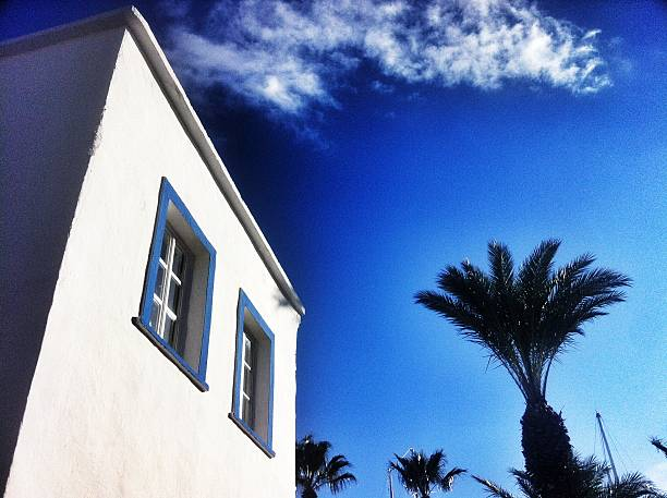 bodrum house with palm stock photo