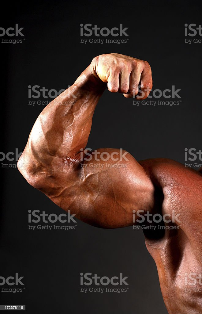 body builder bicep royalty-free stock photo