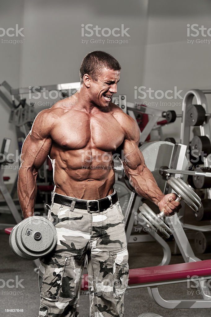 Body Builder Exercising in The Gym royalty-free stock photo