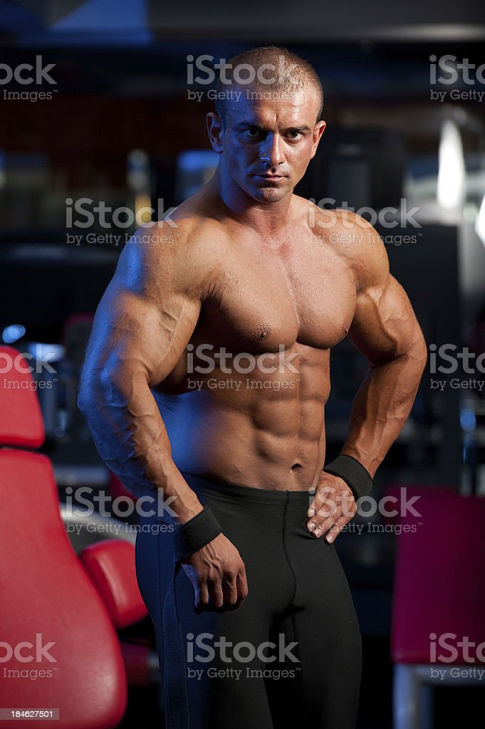 Body Builder In The Gym royalty-free stock photo