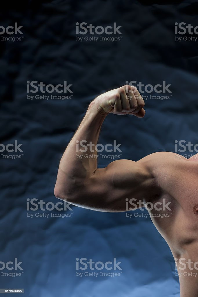 body builder performing arm curl royalty-free stock photo