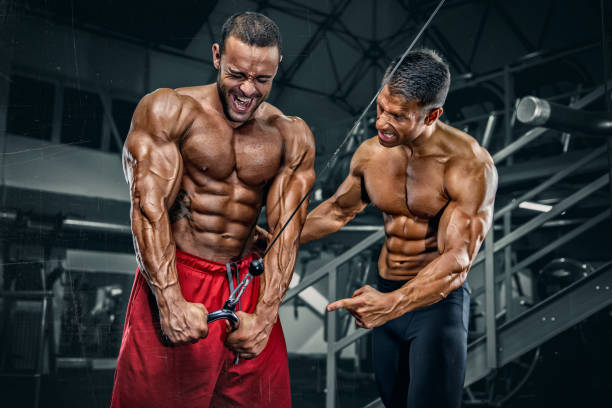 Body Builders Workout at the Gym stock photo