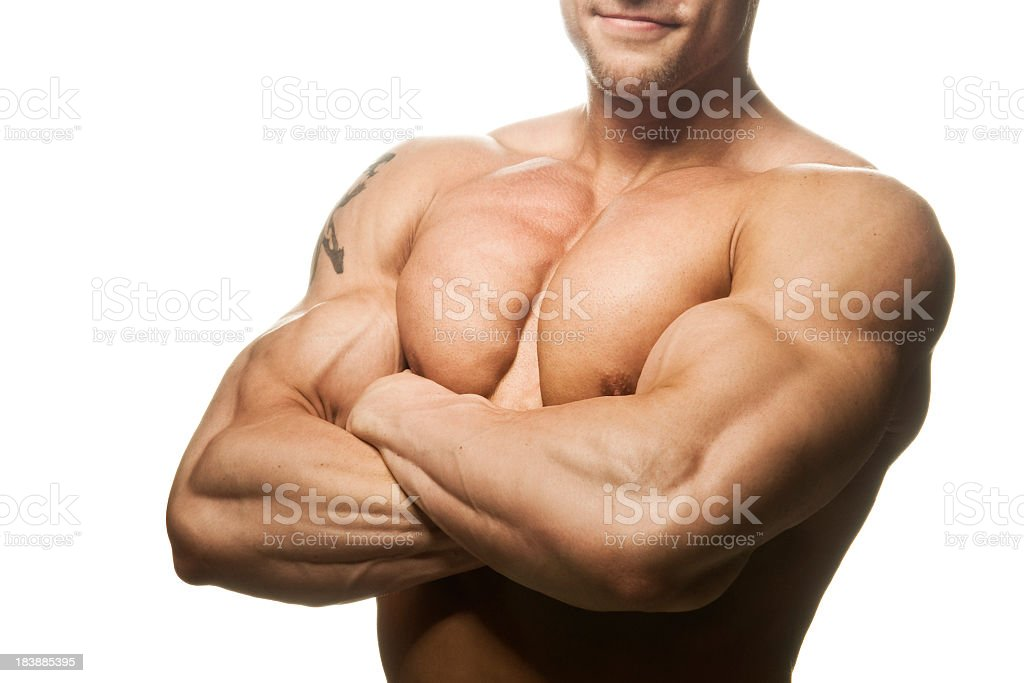 Body building - Muscular Male Torso on white royalty-free stock photo
