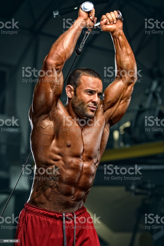 Body Building Workout foto stock royalty-free