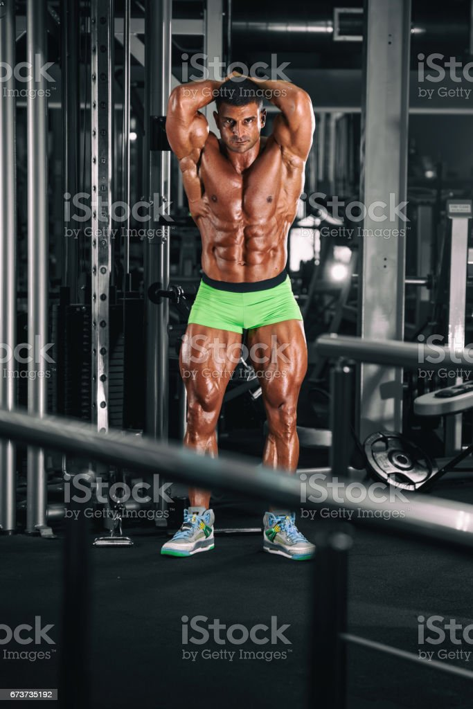 Body Building Workout royalty-free stock photo
