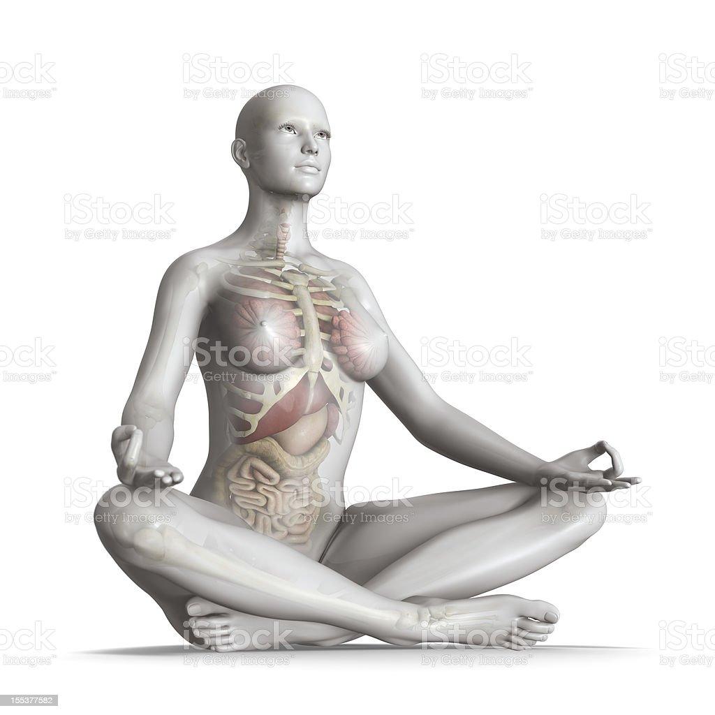 Body in balance royalty-free stock photo