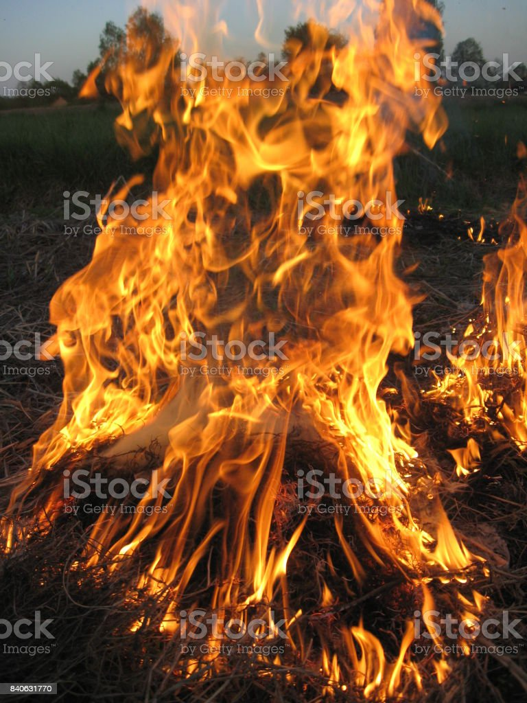 body of flame inflaming in a field stock photo