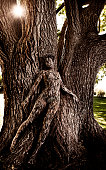 istock Body Painting: Tree Camouflage 108352021