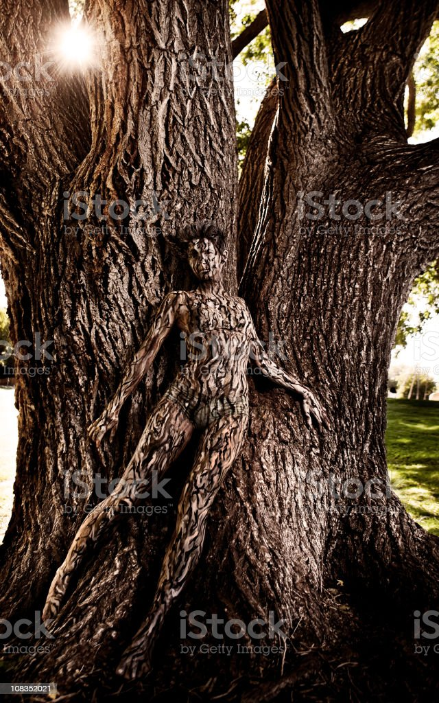 Body Painting: Tree Camouflage stock photo